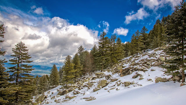 Skiing and mountaineering above Bitola