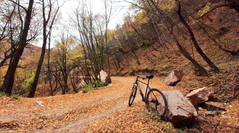 Biking tour: The Monastery Tour